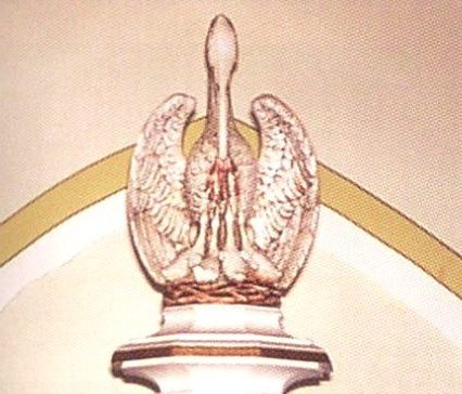 Image of pelican
